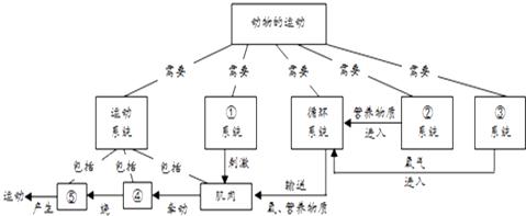 如图表示动物运动的结构及其过程的概念图,请将它补充
