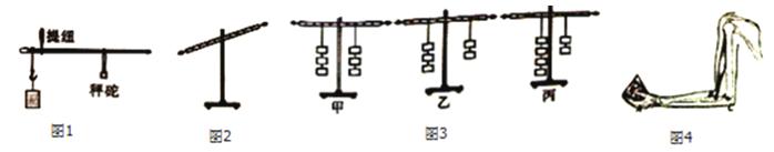 """02在""""探究杠杆的平衡条件""""实验中"""