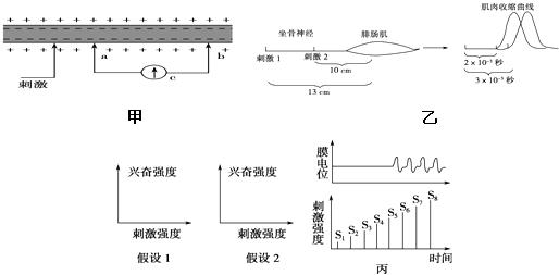 将连接灵敏电压表的导线两端置于神经纤维某处(已知表的指针向电流