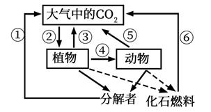 图片_x0020_100006