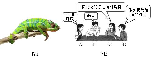 图片_x0020_100001