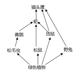 图片_x0020_100008